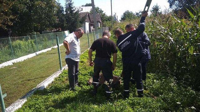 Рятувальники витягнули собаку, що впав у криницю на Жидачівщині