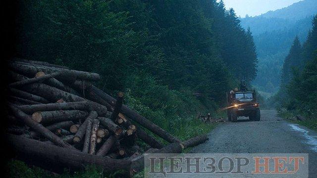 «Цензор.нет» опублікував фото вирубки лісу-кругляка поблизу Східниці
