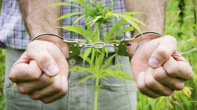 Керівник поліції Києва запропонував декриміналізувати зберігання наркотиків у невеликих дозах