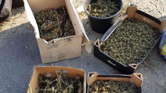 На Закарпатті виявили партію наркотичних речовин вартістю майже ₴40 млн