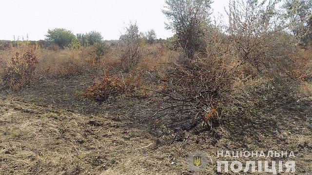Поліція не побачила слідів підпалу виноградників французького винороба на Одещині
