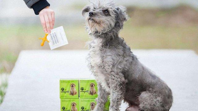 У Львові відбудеться виїзна акція з безкоштовного чіпування собак