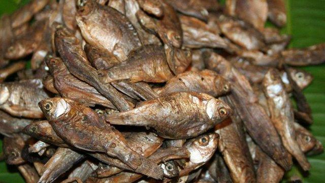 На Сумщині у двох чоловіків через вживання в'яленої риби діагностували ботулізм