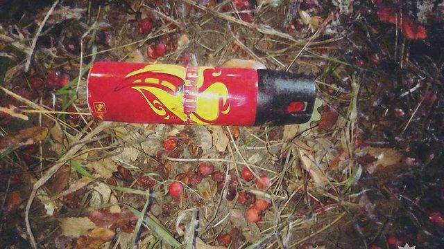 У Львові підозрюваний у крадіжці застосував до патрульних газовий балончик під час затримання