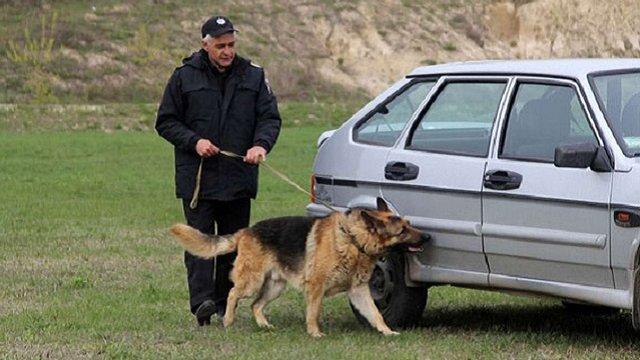 Нацполіція збудує у Львові розплідник для службових собак