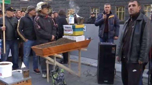 Пасічники принесли під Кабмін бджолину труну через масову загибель комах