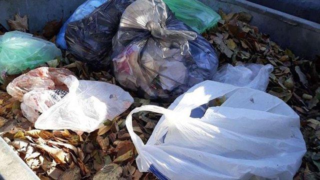 Львівським двірникам заборонили викидати листя у сміттєві контейнери