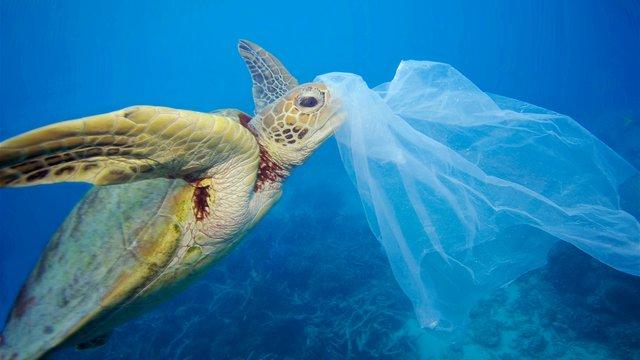 Європарламент схвалив рішення щодо заборони одноразового пластику