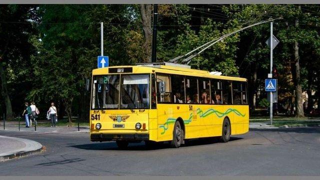 Петиція про запуск тролейбуса у Рясне набрала необхідну кількість голосів