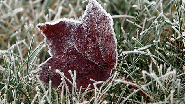 На Львівщині до кінця тижня синоптики прогнозують погіршення погоди