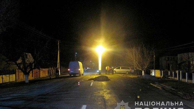 На Буковині автомобіль збив підводу із конем, є жертви