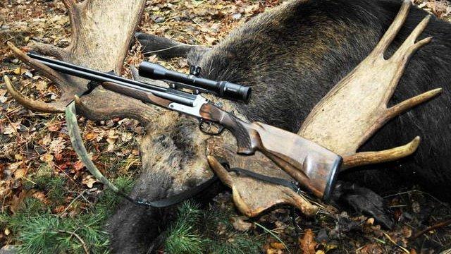 Окружний адміністративний суд Києва скасував заборону на полювання на лося