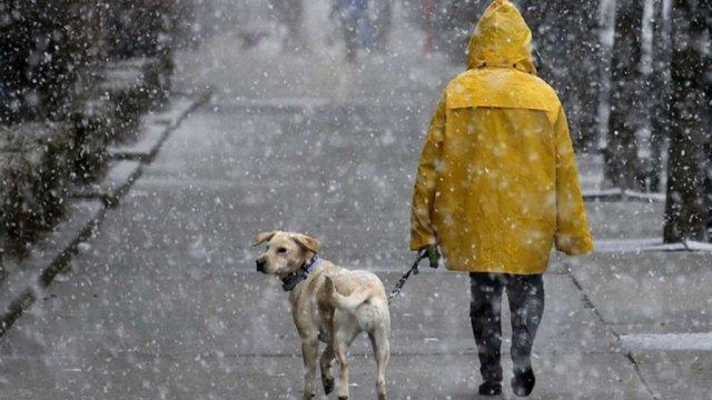 Циклон Benjamin принесе до України мокрий сніг та штормовий вітер