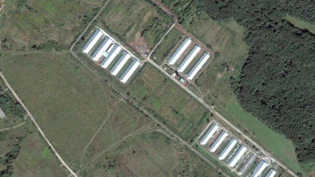 Активісти звинуватили птахофабрику у Давидові у зливі стічних води неподалік від лісу