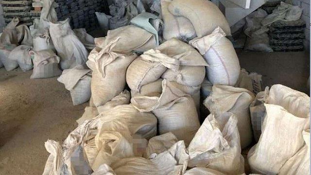 На підпільному комплексі біля Одеси СБУ вилучила 6,5 тонн бурштину