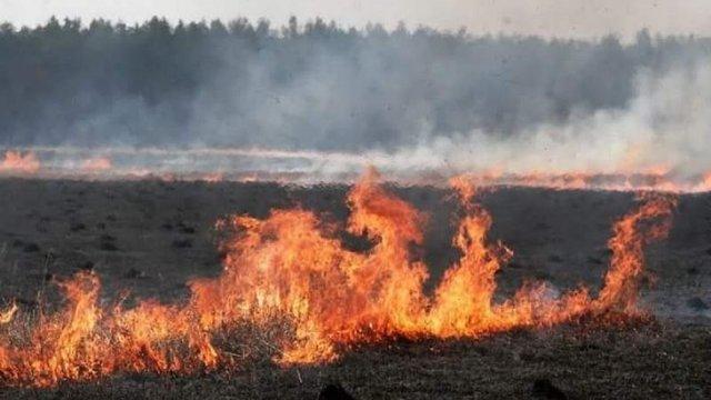 На Львівщині впродовж доби рятувальники загасили 29 пожеж сухостою