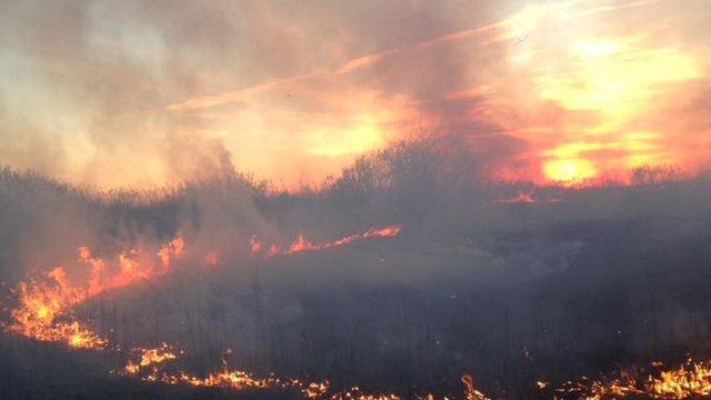 Синоптики попереджають про надзвичайну пожежну небезпеку у вихідні на Львівщині