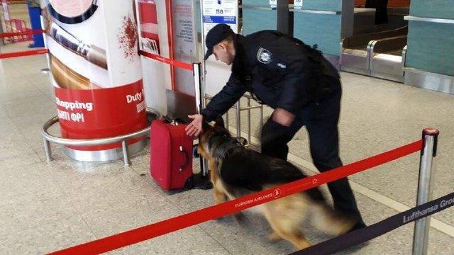 Через повідомлення про замінування з аеропорту «Львів» евакуювали 700 людей