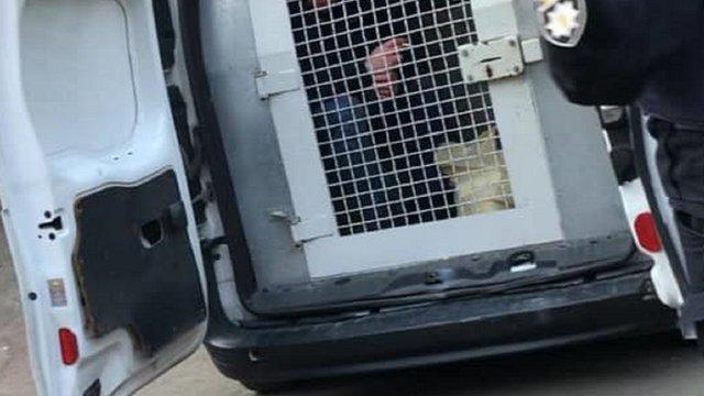 Співорганізатора замаху на «Вову Морду» затримали одразу після виходу з СІЗО