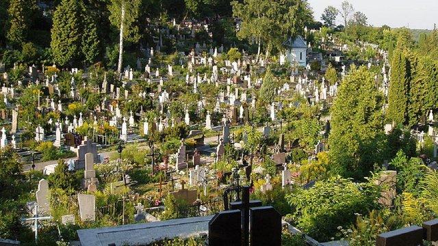 Львівська мерія шукає земельну ділянку під нове міське кладовище