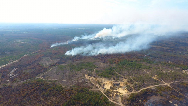 Масштабна лісова пожежа виникла на кордоні з Білоруссю