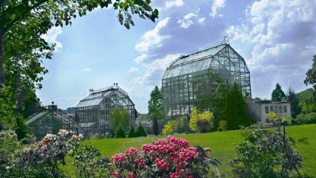 На День матері у львівському ботанічному саду відбудеться день відкритих дверей