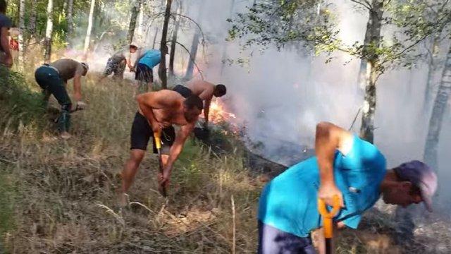 Українські заробітчани в Польщі запобігли поширенню масштабної пожежі в лісі