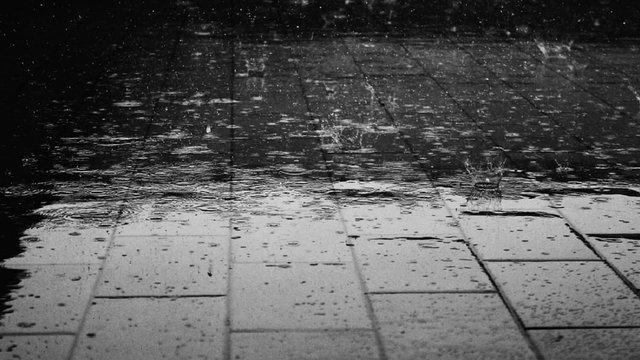 В Україну йдуть дощі з похолоданням