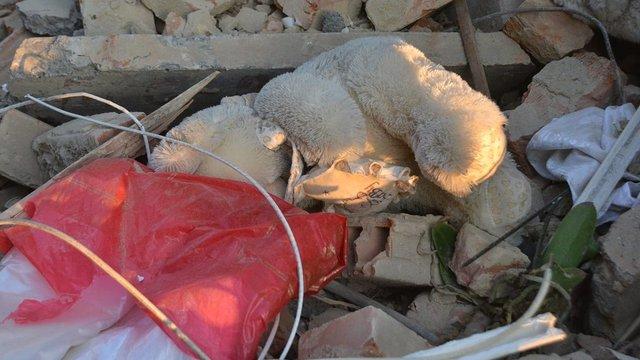 Родинам постраждалих і загиблих у Дрогобичі виплатять по 50-100 тис. грн допомоги