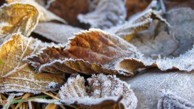 Укргідрометцентр попередив про перше осіннє похолодання та приморозки в Карпатах