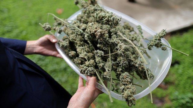 На Рівненщині поліція затримала викладача правознавства, який торгував марихуаною