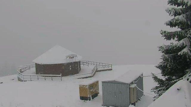 У Карпатах випав перший сніг. І не зупиняється