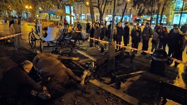Налякані фейєрверком коні у центрі Львова важко травмували 15-річну дівчину