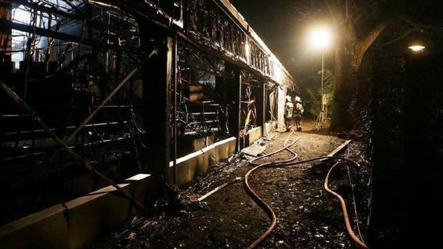 Через новорічні феєрверки у німецькому зоопарку згоріли понад 30 тварин