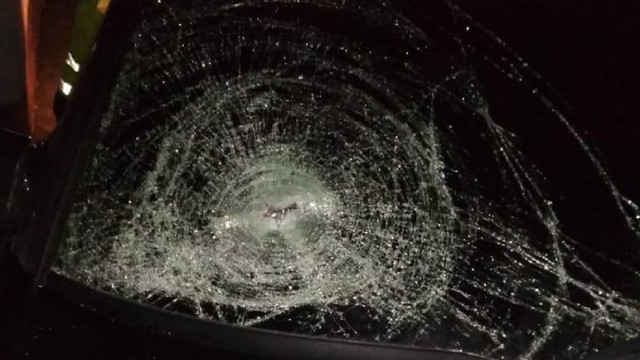 Поліція встановила особу водія, який у Солонці збив на смерть пішохода і втік