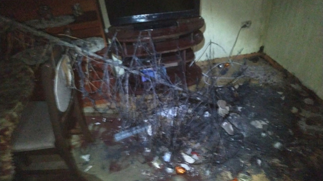 У квартирі в Великому Любіні внаслідок короткого замикання новорічної гірлянди виникла пожежа