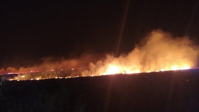 За минулу добу на Львівщині вогнеборці ліквідували 11 пожеж сухої трави