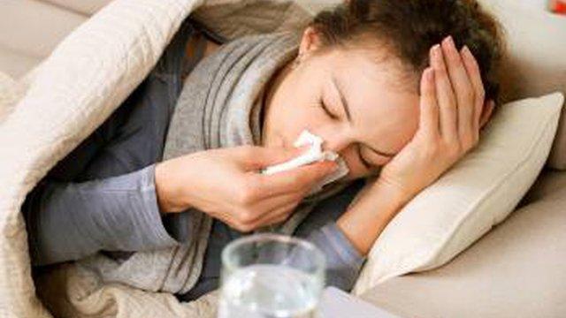 На Житомирщині за три тижні від «свинячого грипу» померло шестеро людей