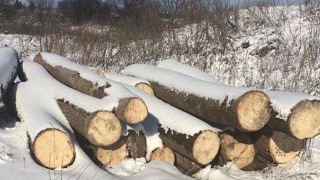З приватної пилорами у Бродівському районі поліцейські вилучили незаконно зрубані дерева