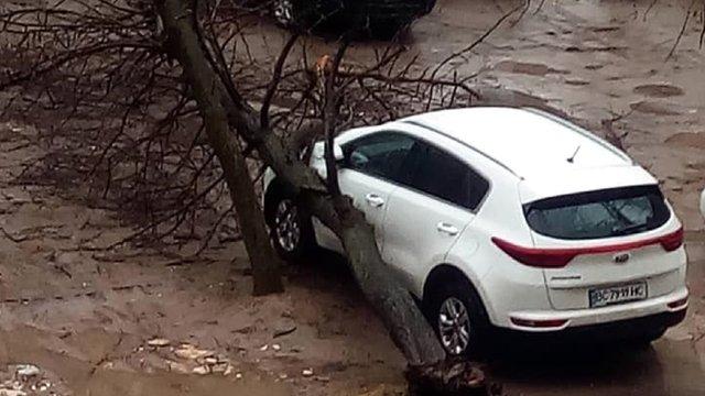 На вулицях Любінській та Коцюбинського дерева впали на припарковані автомобілі