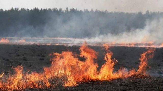 ЛОДА просить збільшити штраф за підпал сухої трави у 200 разів
