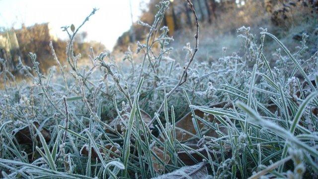 Синоптики попередили про заморозки в Україні