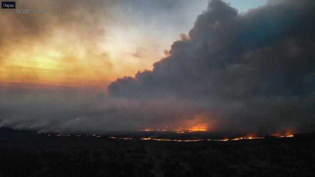 Пожежа в Чорнобильській зоні вже завдала збитків на десятки мільйонів гривень