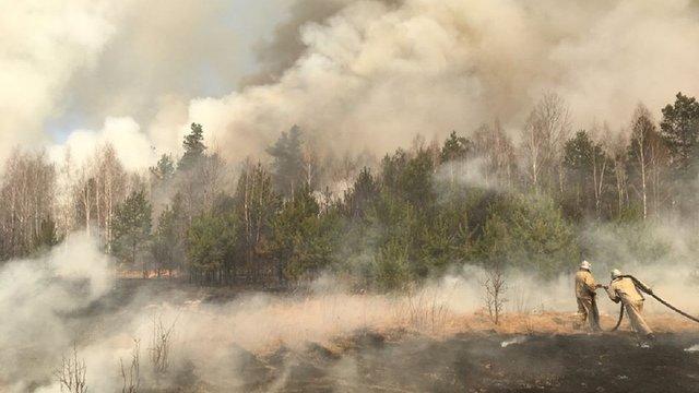 У Чорнобильській зоні понад 300 рятувальників вже 8 день гасять пожежу