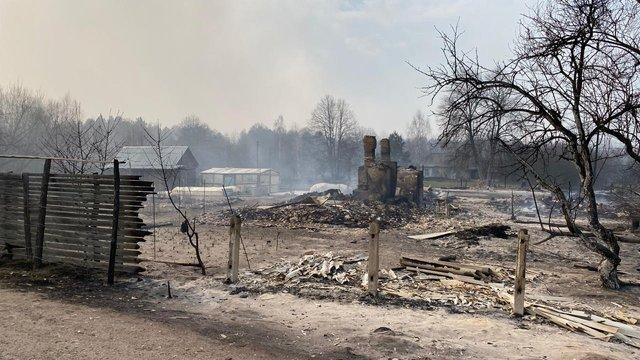 На  Житомирщині пожежа охопила 4 тисячі гектарів лісу та кілька сіл