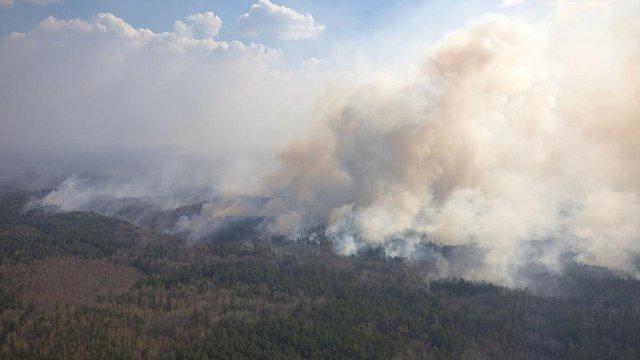 МВС розглядає підпал як версію лісових пожеж на Житомирщині