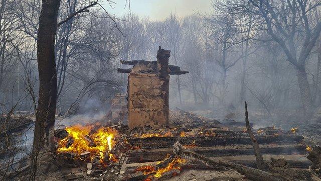 Пожежники продовжують гасити вогнища лісових пожеж у зоні відчуження