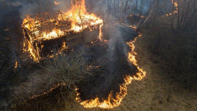 Причиною масштабних пожеж на Житомирщині може бути падіння дерева на електродроти