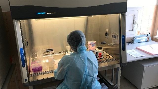 Уряд анонсує масове ІФА-тестування на коронавірус. Навіщо?