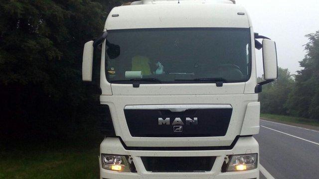 На трасі Київ-Чоп біля Стрия під колесами вантажівки загинув 77-річний львів'янин